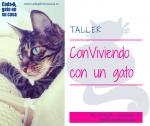 Taller Conviviendo con un gato